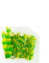 """צמח פלסטיק 40 ס""""מ"""
